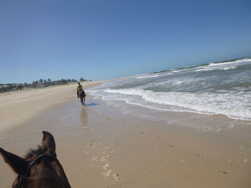 über den Strand galoppieren