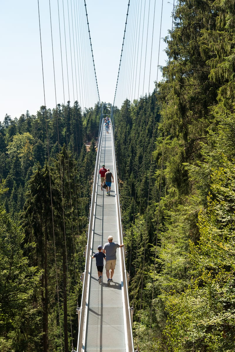 Hängebrücke WILDLINE Foto: Simon Bierwald/Indeed Photography
