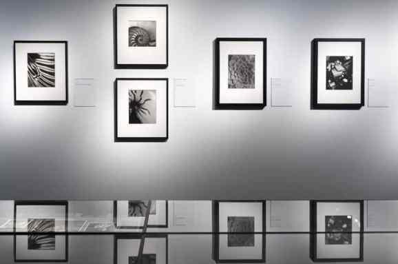 Fotografische Muster (Foto: Simon Bierwald, Indeed Photography)