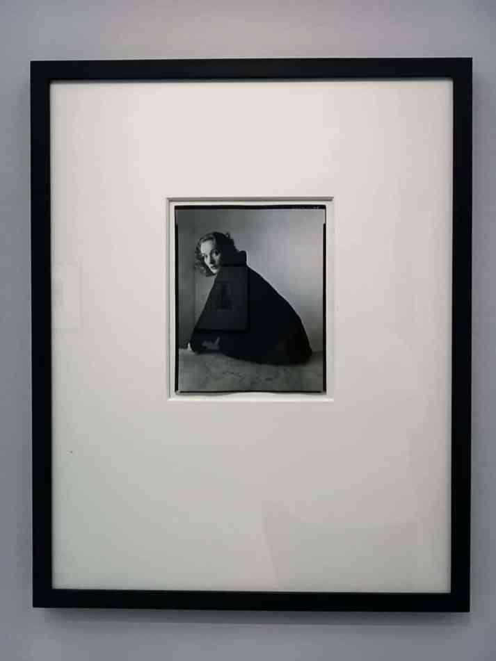 Marlene Dietrich, portraitiert von Irving Penn