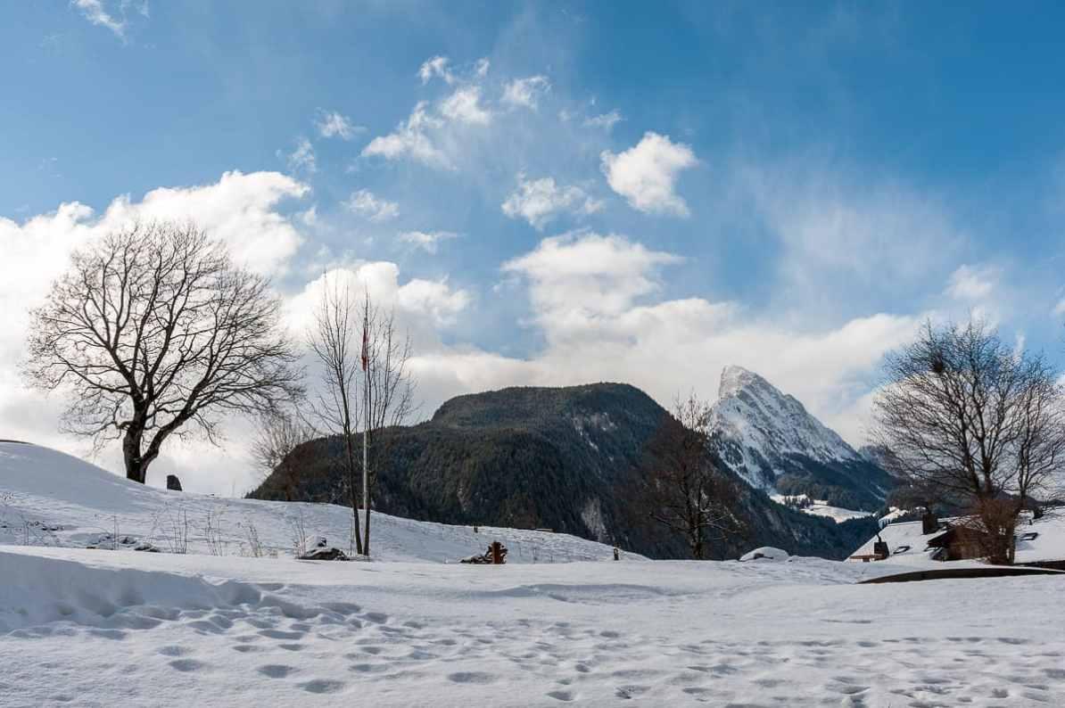 Blick auf die Schweizer Alpen aus Zimmer 602