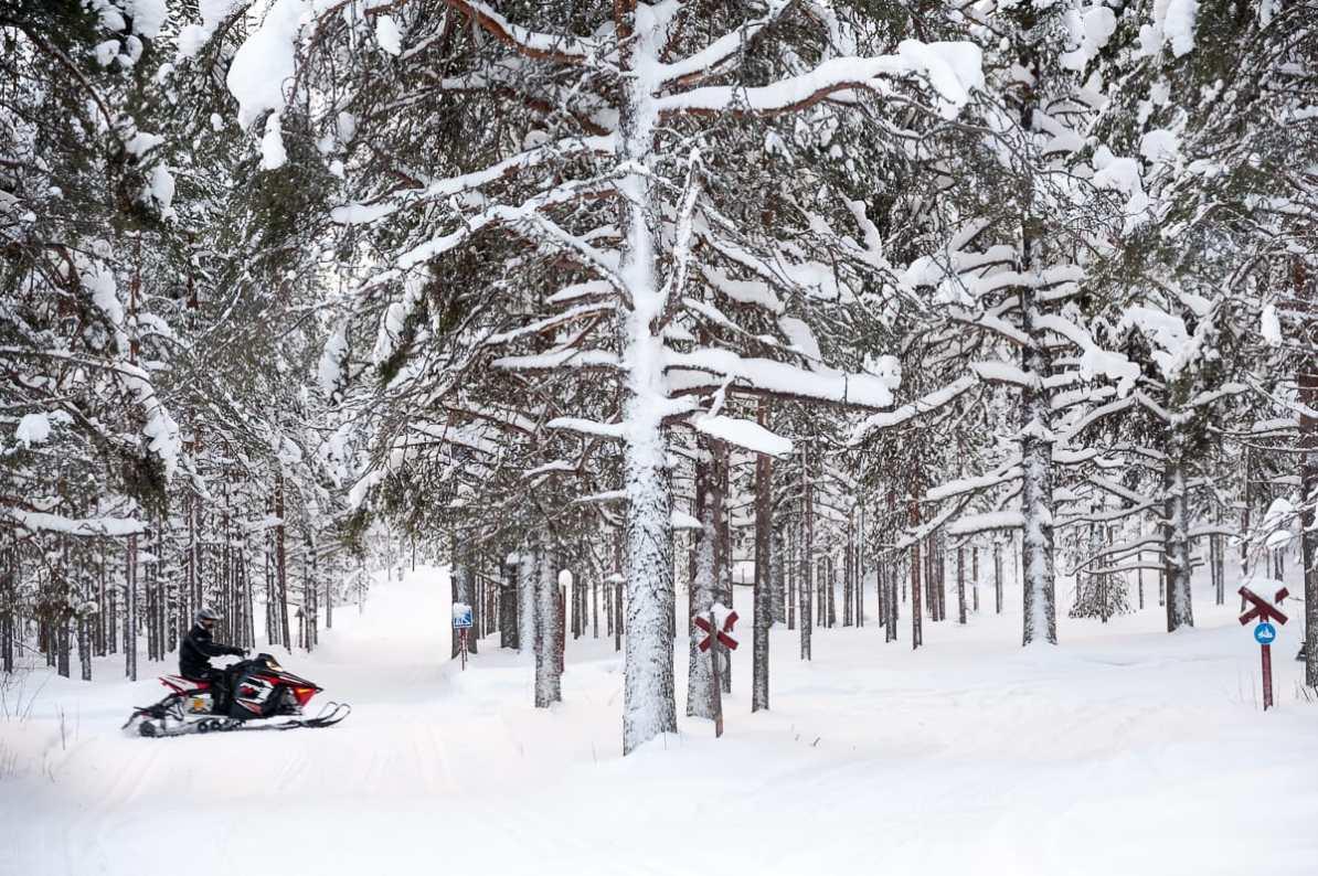 Mit dem Schneemobil durch den Wald