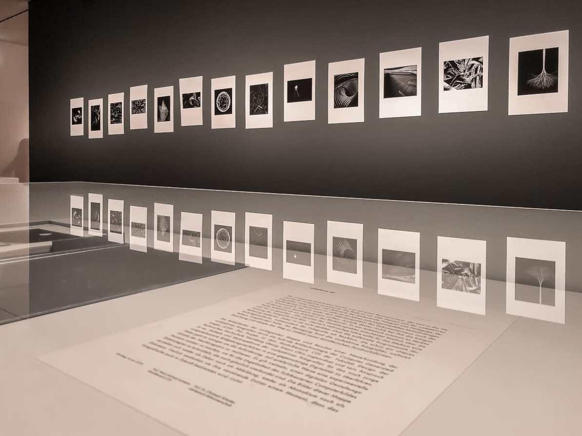 CGI-Arbeiten der Studierenden aus Nürnberg, ausgedruckt, in einer Mappe präsentiert