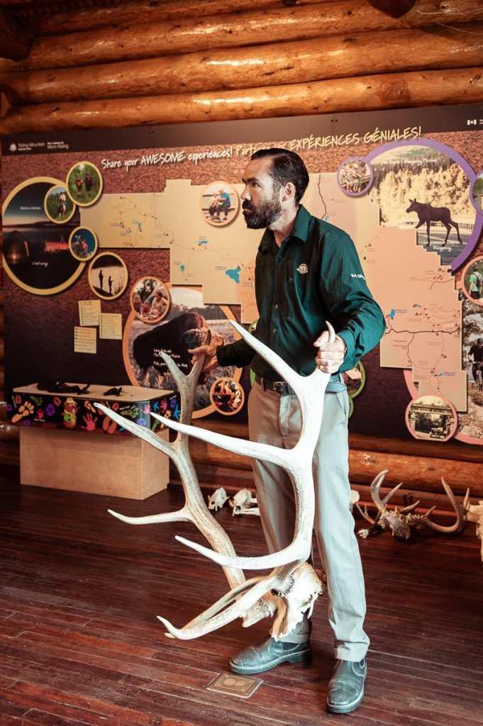 Patrick erzählte im Besucherzentrum mehr zu den Tieren, dabei hält der Parkranger ein großes Hirschgeweih in seinen Händen.