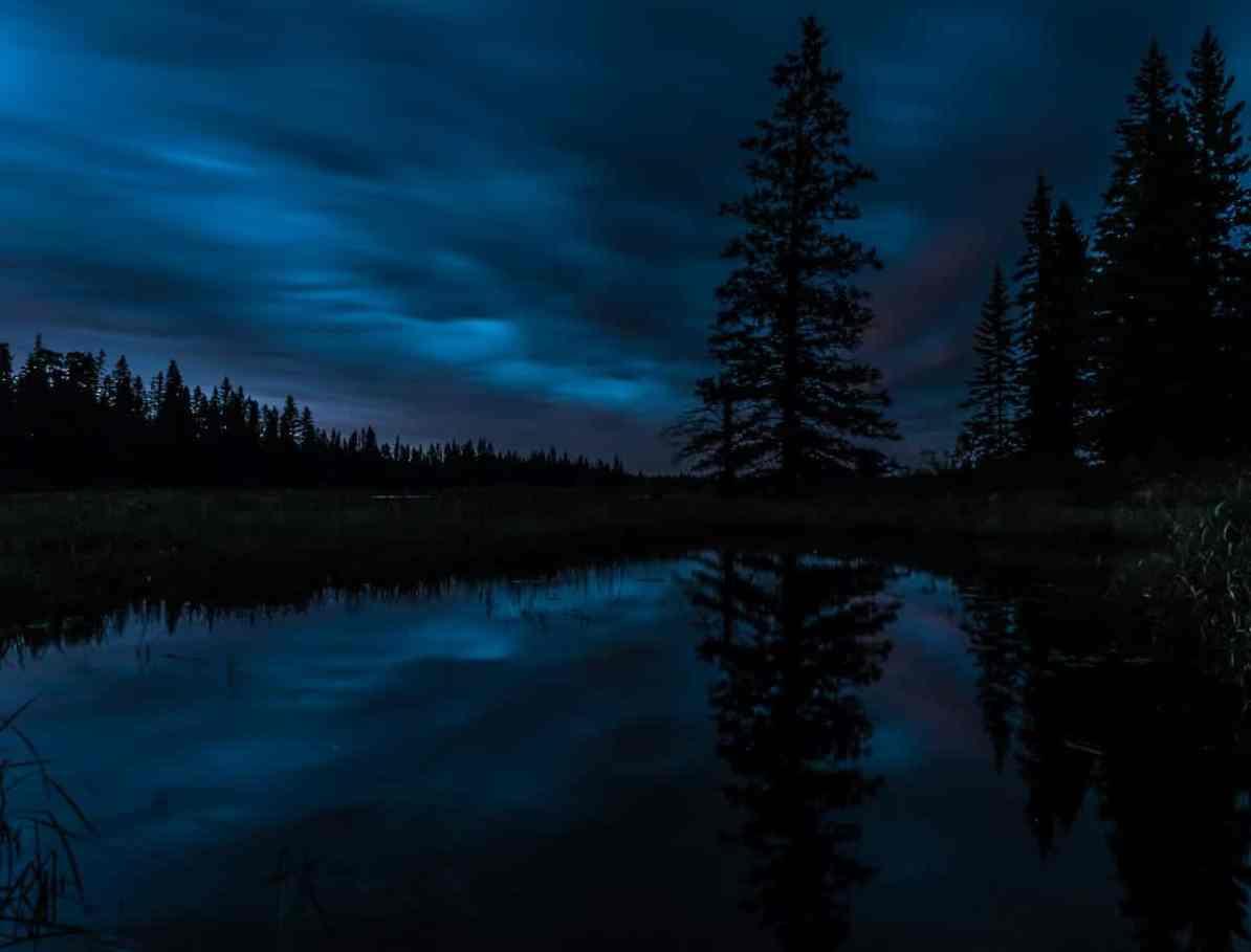 Nachts am Whirlpool Lake im Riding Mountain National Park - dunkelblau bis schwarze Silhouette eines Sees mit Bäumen.