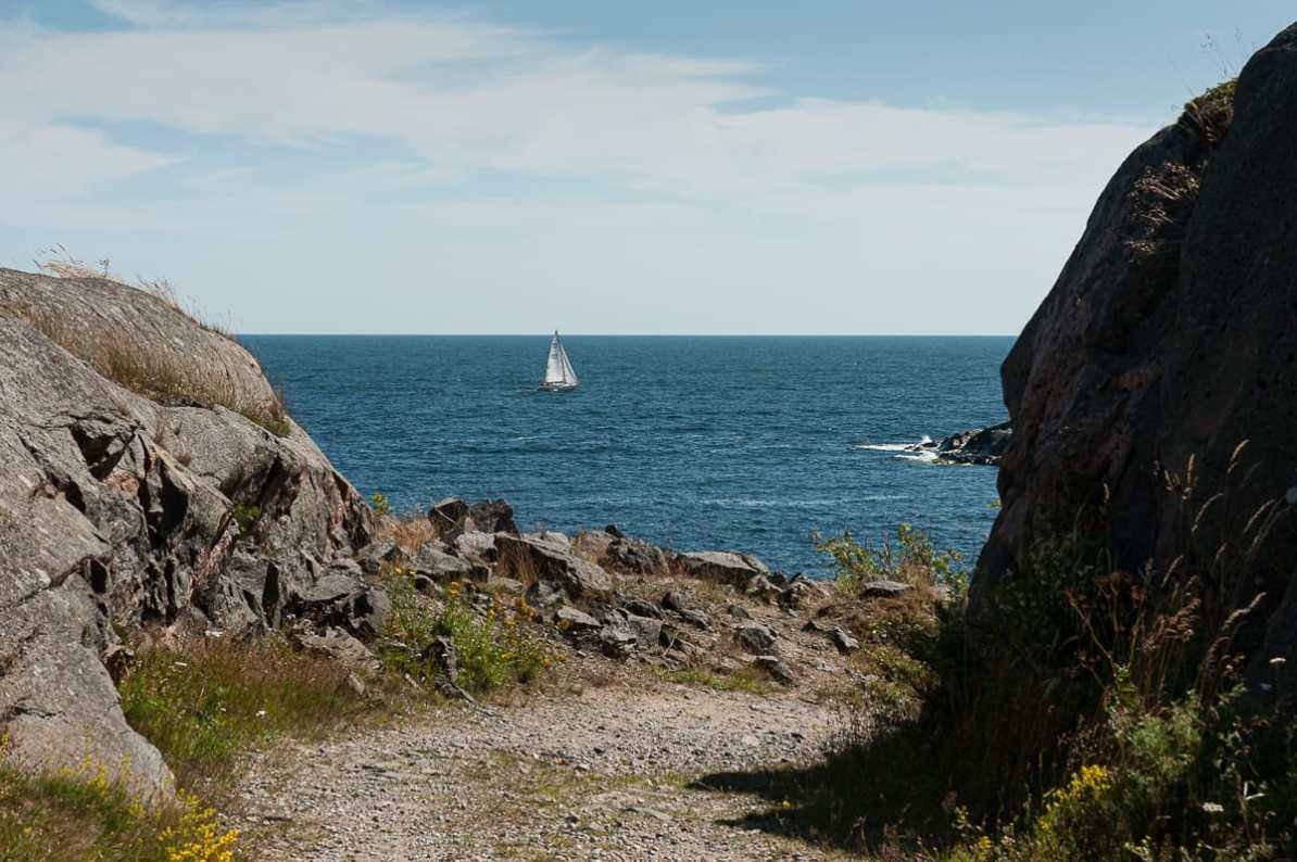 Idylle auf Landsort mit Segelboot am Horizont auf der Ostsee.