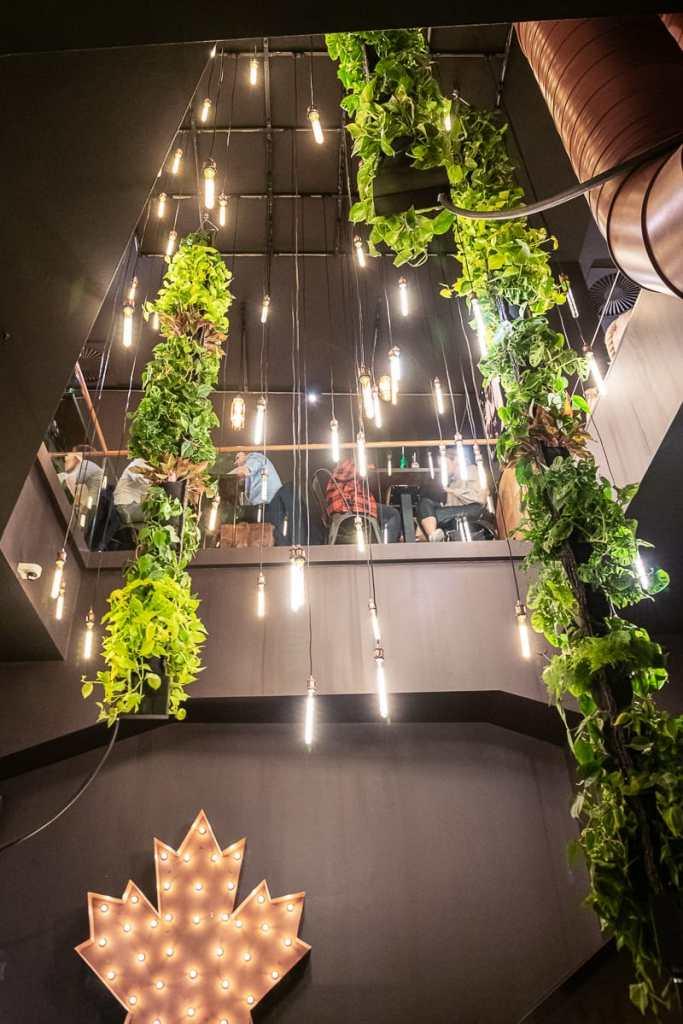 Ein Paradies in Grün - das Frittenwerk Hamburg. Herabhängendes Grün aus dem Obergeschoss bis ins Erdgeschoss.