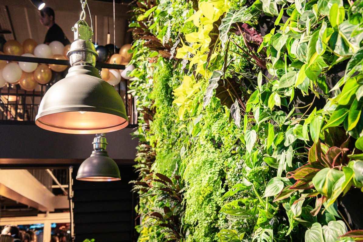 Die grüne Wand an Pflanzen im Frittenwerk Oberhausen.
