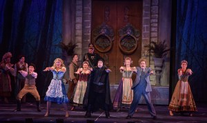 Cast of Young Frankenstein Photo: The Muny