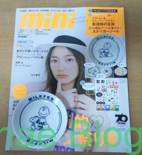 スヌーピーの豆皿が付録「雑誌mini6月号」購入レビュー