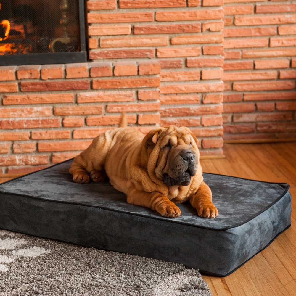 Snoozer Outlast Dog Bed Sleep System  5 Inches Thick