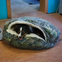 Snoozer Cozy Cave Dog Beds | Hooded Dog Beds | Cave ...