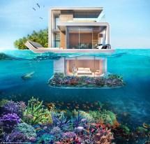 Seahorse Floating House