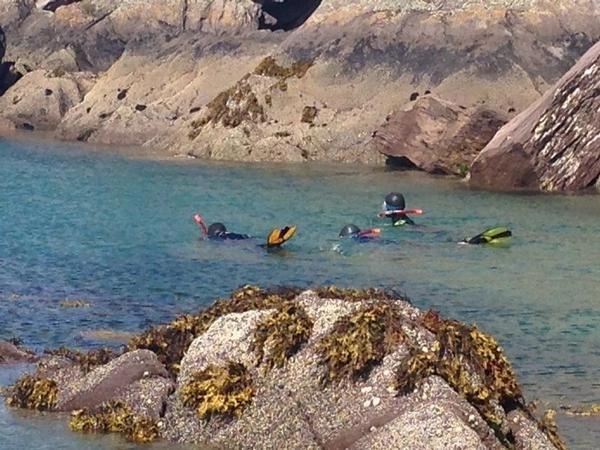 Snorkeling on Ireland