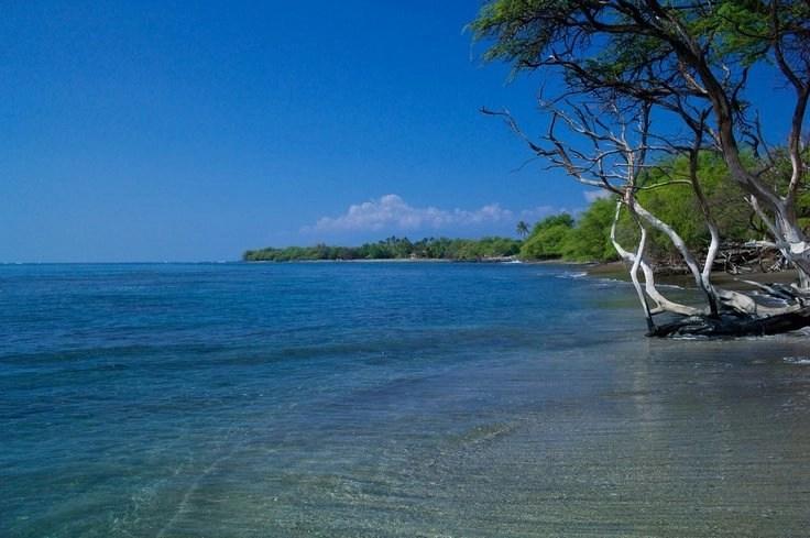 snorkeling-maui-beaches-olowalu