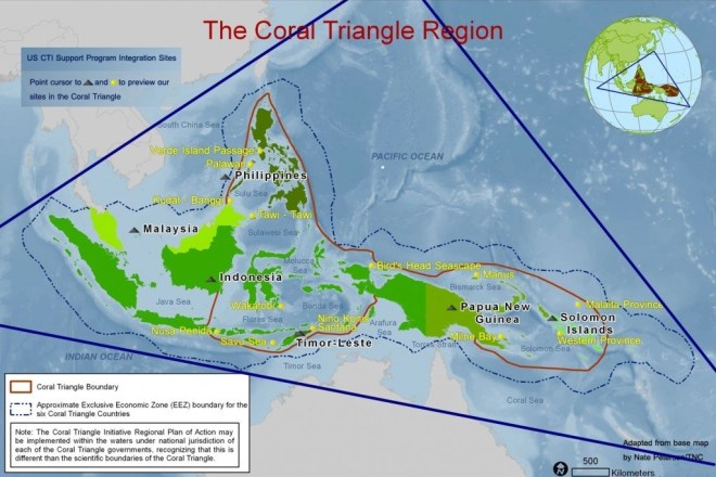Philippines Coral triangle