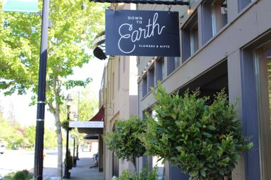 Down to Earth Store