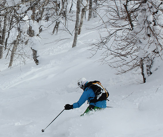 j.rusutsu.skier