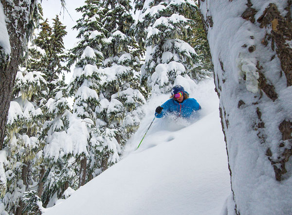 Where do you find Whistler Blackcomb's best tree skiing? Read this, or even better lob on with YES Tours © Eric Berger