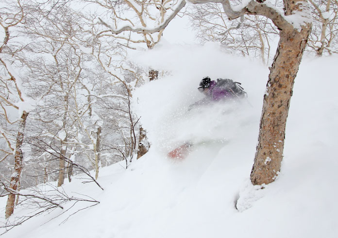 snowboarding in the trees at Asahidake