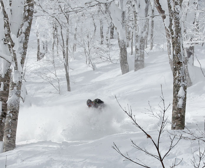 powder in the trees at Nekoma