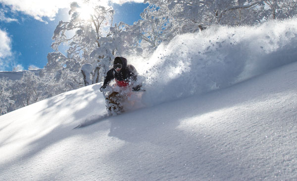 powder skiing Kiroro