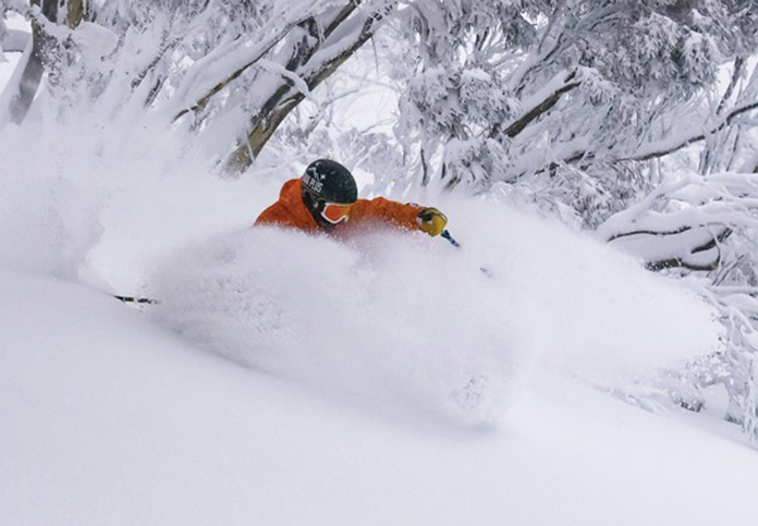 Skiing Hotham powder in the trees