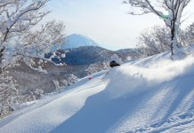 fresh powder with First Tracks Hanazono