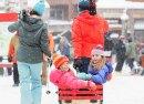 Keystone kids carts