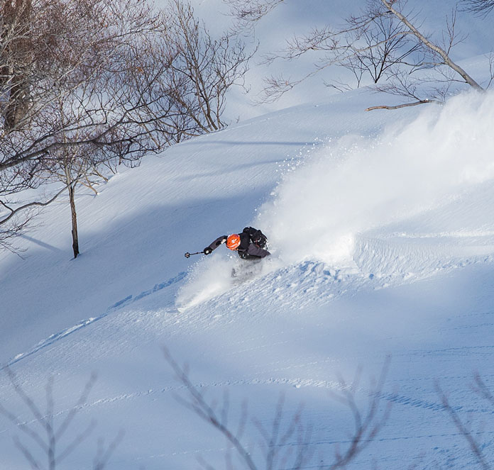 Powder skiing at Tenji