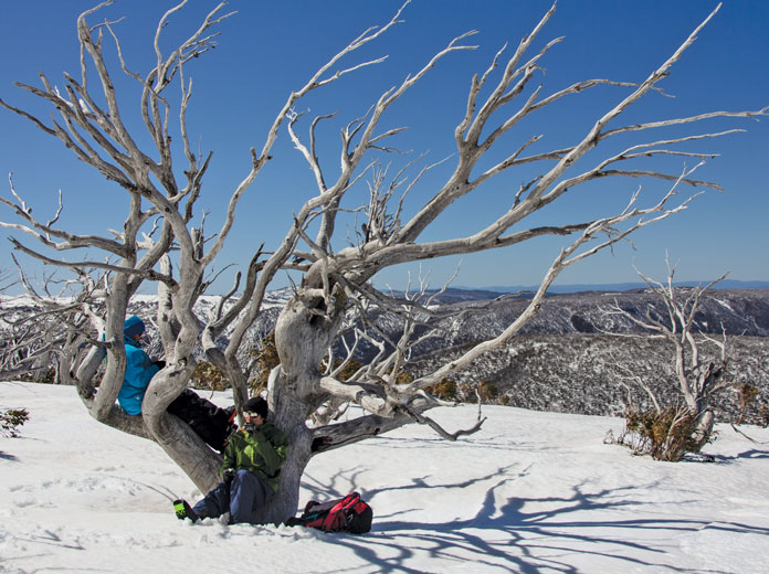 Lunch in the Hotham backcountry