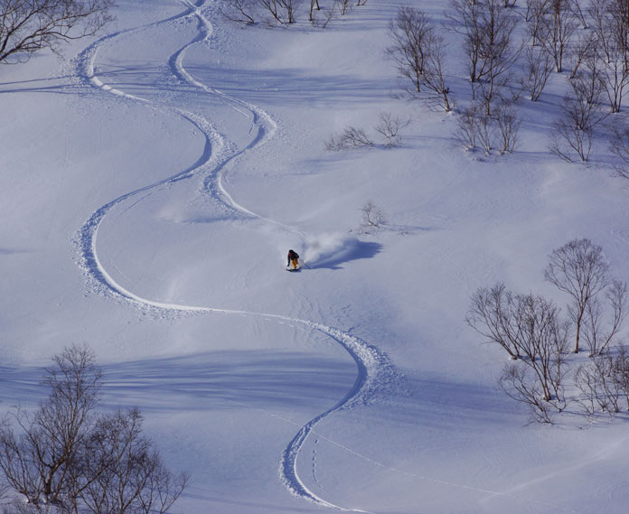 A mellower line above Tsugaike in the Haluba back country