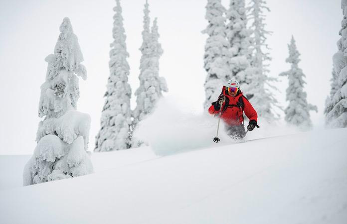 Glade skiing powder with Mike Wiegele Heliskiing
