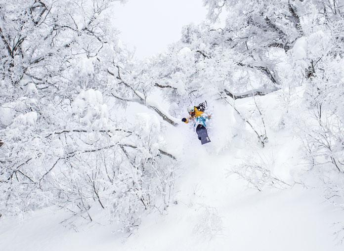 Smashing through trees in powder at Nozawa Onsen Nagano Japan