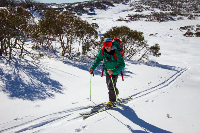 Back country ski touring Mt Wheatley
