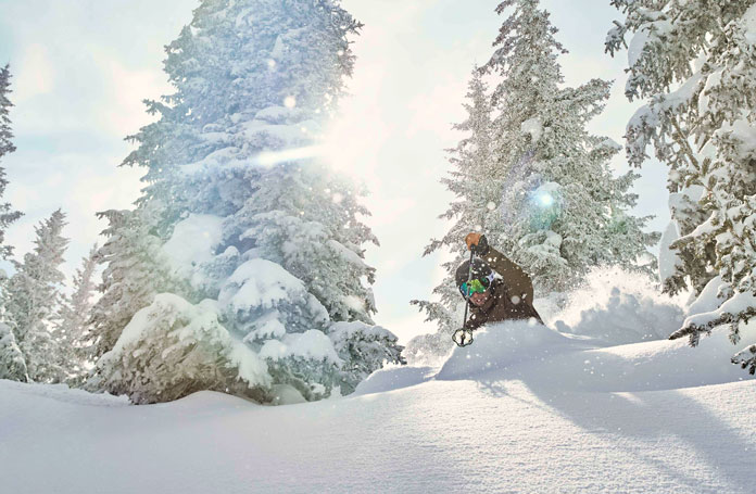 Glade skiing on a deep day at Vail