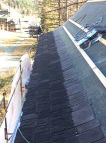 Ponderosa roof line