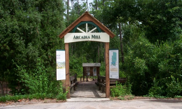 This Month in Historic Arcadia
