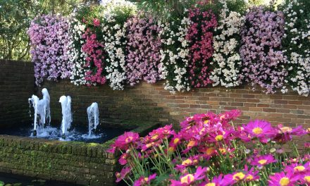 July Events at Bellingrath Gardens and Home