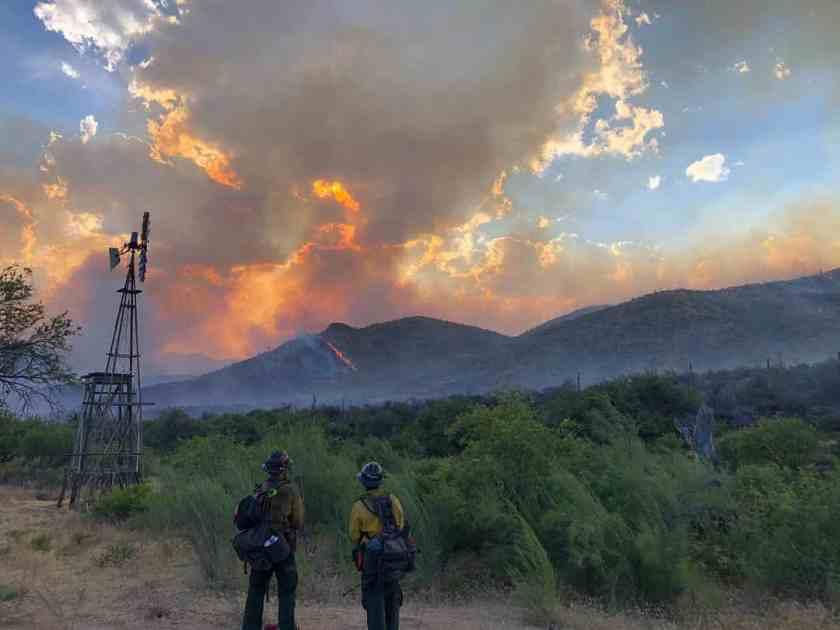 wildfire, fire, california, heatwave, Arizona, wildfires