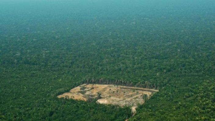 Deforestation is happening in the Amazon at an alarming rate.