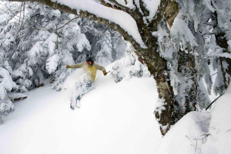 paradise, Vermont, tree skiing