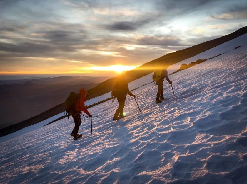 Shasta summit