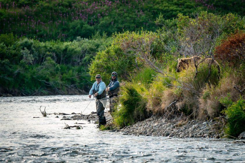 bear, Alaska, grizzly, fishermen,
