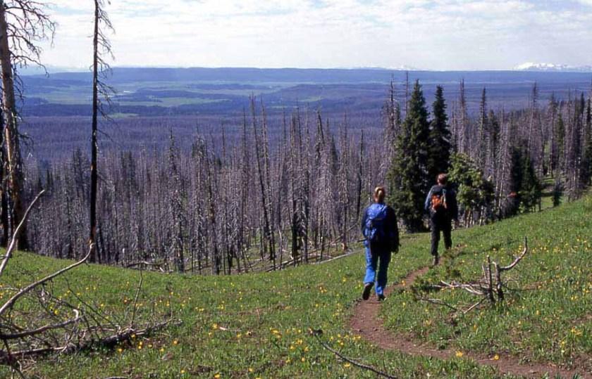 Yellowstone backountry
