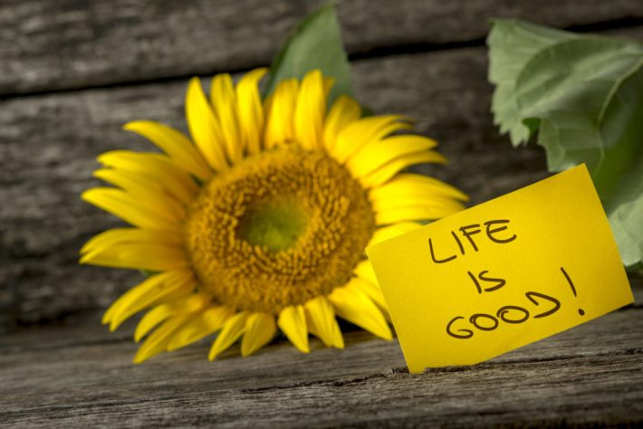 A good life is not a flawless life 6