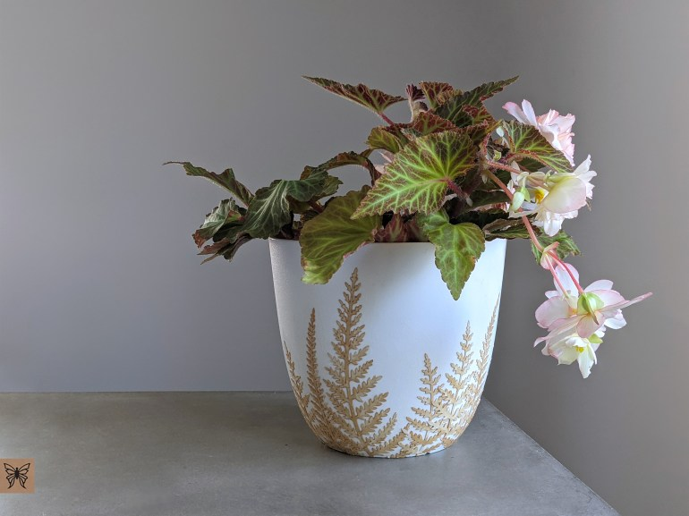 Decoupage plastic pot with Begonia