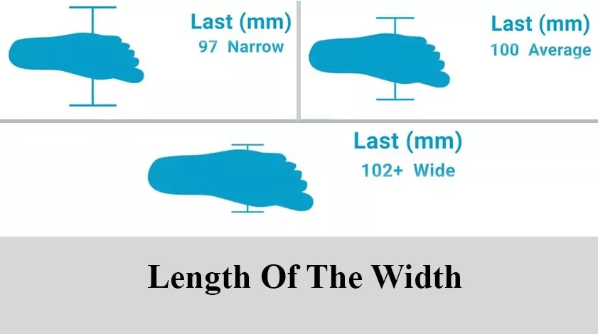length of the width