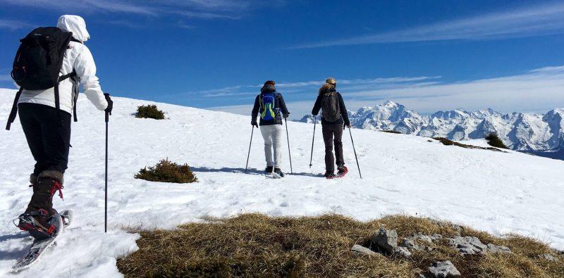 bien-choisir-batons-raquette_a_neige-raquette-hiver-neige-montagne-equipement-conseils-snowflike