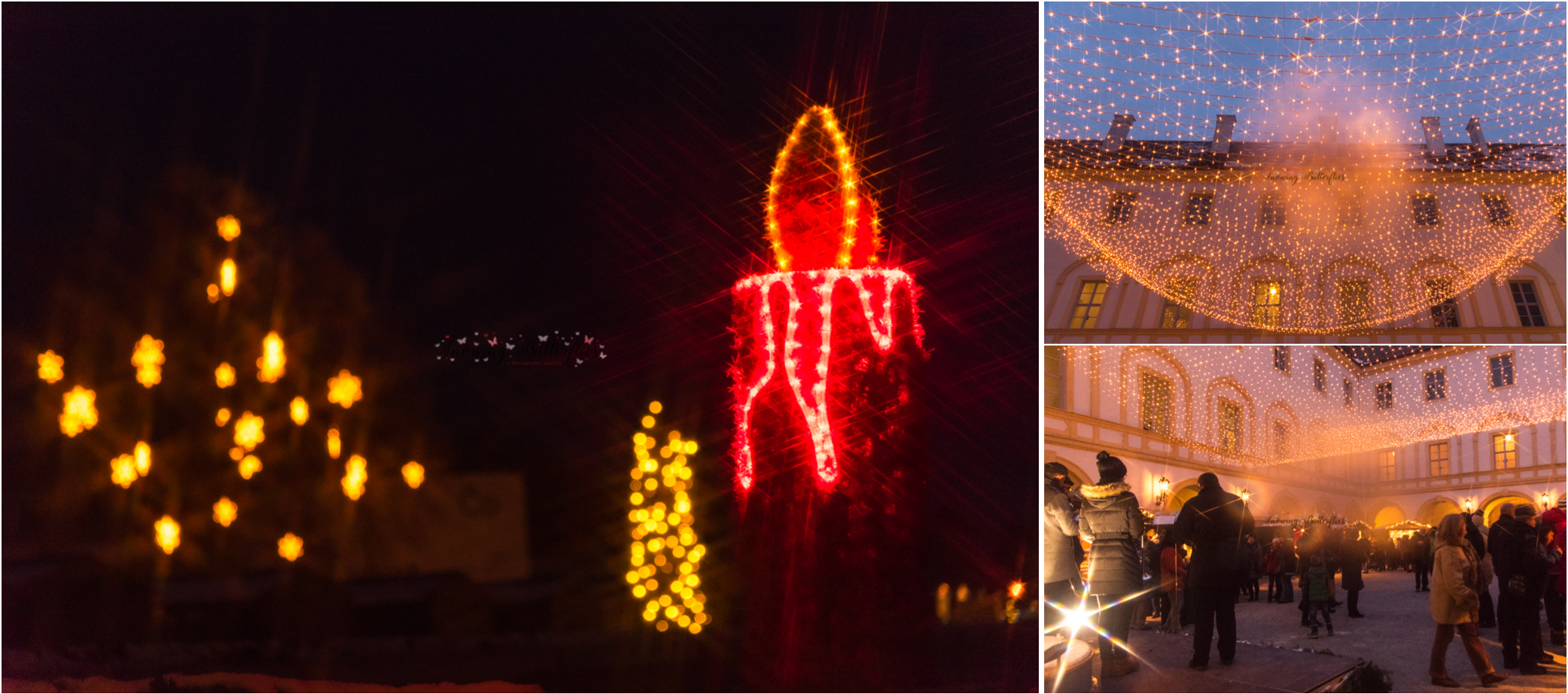 snowing butterflies, mariana perrone, austria, vienna, schloss hof, travel photography, europe, christmas
